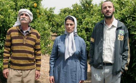 lemon-tree-etz-limon-3