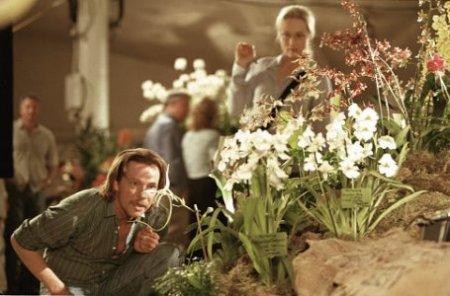 Susan muda de opinião sobre John Laroche à medida que conhece o mundo apaixonante das orquídeas raras.