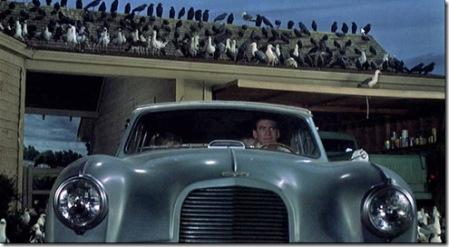 1963-the-birds3
